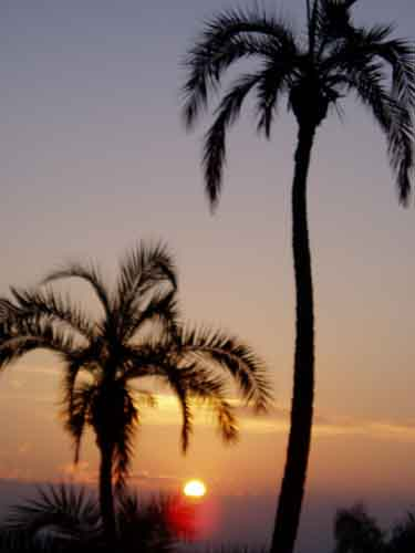 Sunrise Awakening Acceptance Los Angeles